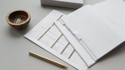 Microentidades: o conceito contabilístico, a norma e o plano de contas