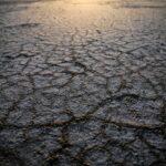 Fiscalidade verde: os benefícios fiscais destinados ao ambiente